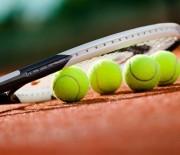 Meciul Romania – Slovacia, din Cupa Davis, va avea loc la Mamaia