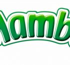 New Mamba Logo facelift 2007