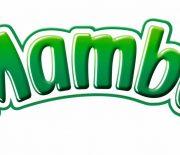 New Mamba Logo facelift 2007